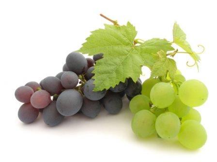 В спелом винограде очень много природных антиоксидантов
