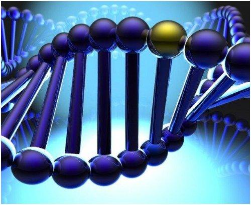 Генная мутация ихтиозоподобных заболеваний