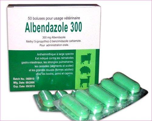 Албендазол при лямблиозе