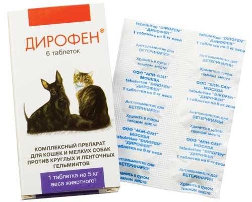 Дирофен – таблетки для лечения глистов у домашних любимцев