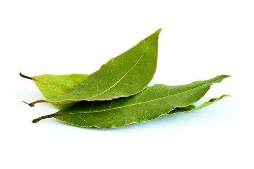 Листья лавры при потливости ног
