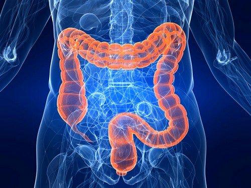 Воспаление толстой кишки: причины, симптомы. Методы лечения воспаления толстой кишки - Автор Екатерина Данилова