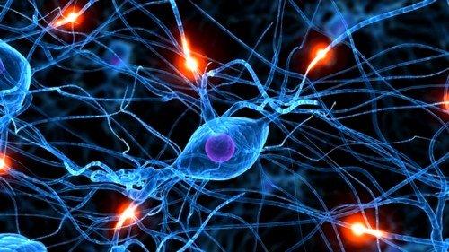 поражения нервной системы
