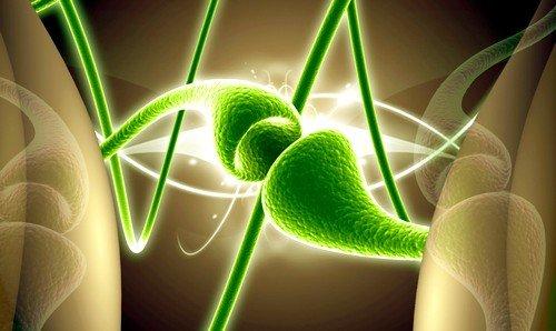 Болевой синдром воспаленного нерва