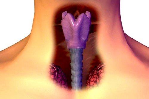 Первые признаки рака горла