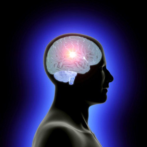 УЗИ сосудов головного мозга