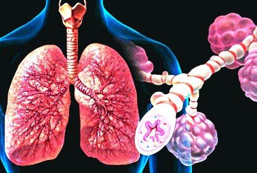 Вентолин применяется при обструктивных заболеваниях органов дыхательной системы