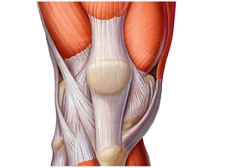 Воспаление сухожилий колена