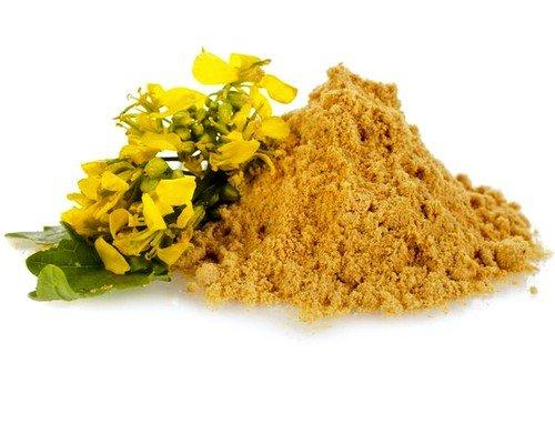 раствор сухой горчицы эффективен для вызова рвоты