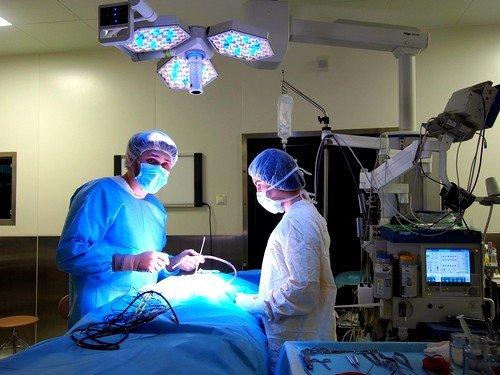 Операция ризотомии