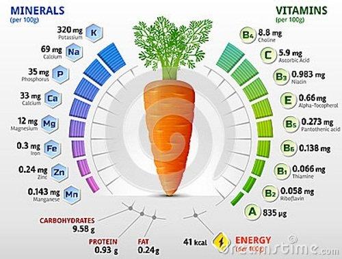Морковь – химический состав