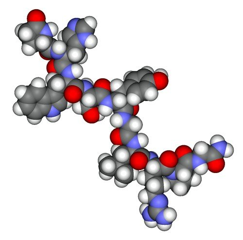 Функциональное продуцирование хорионического гонадотропина начинается с момента зачатия