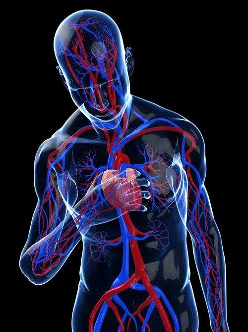 синусовая аритмия – разница между сокращениями