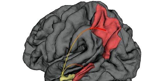 Следующими симптомами являются ослабление способности мыслить, быстрая смена настроения