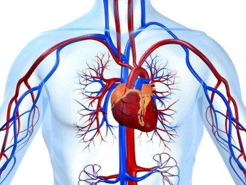 Увеличенная концентрация сахара в крови негативно влияет на сосуды