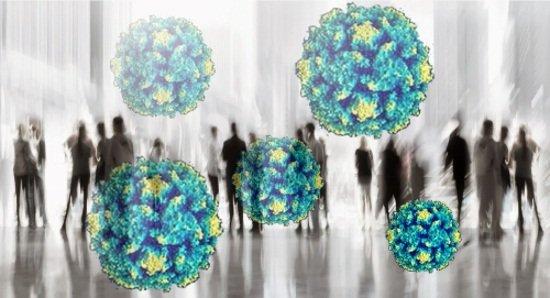 Около 90% населения инфицированы вирусом герпеса
