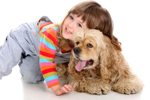 Контакт с животным повышает риск заражения стригущим лишаем