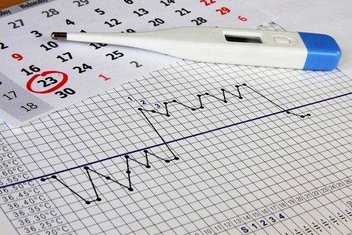 Повышение значения ректальной температуры - признак овуляции