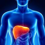 Цирроз печени: сколько живут