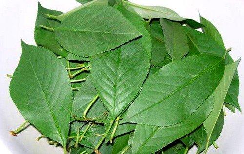 чай с добавлением листьев дерева вишни