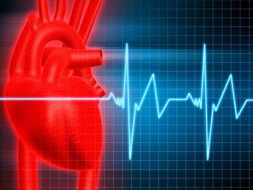 Причиной развития сердечного недуга могут быть возрастные особенности или постоянные нагрузки