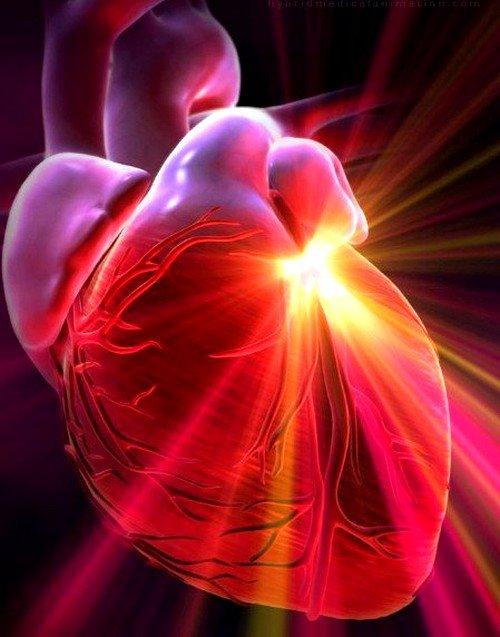 Пороки сердца: классификация фото