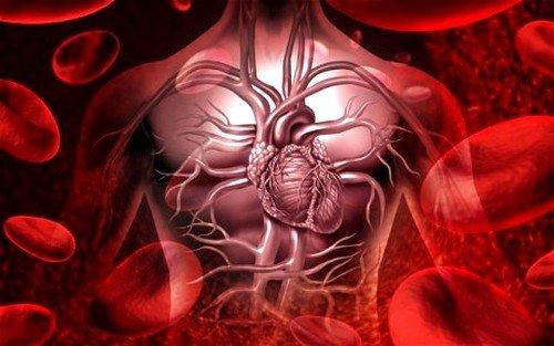 Сердечно-сосудистая недостаточность: симптомы фото