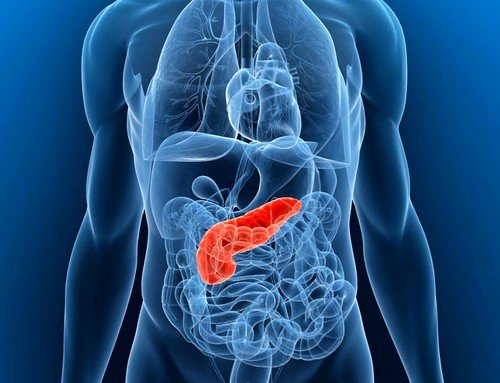 Поджелудочная железа: симптомы заболевания
