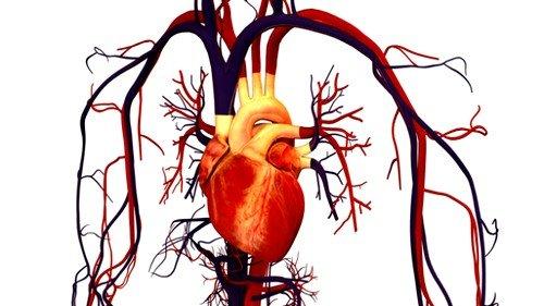 из-за аритмических сбоев кровь плохо поступает к легким, возникает кислородное голодание
