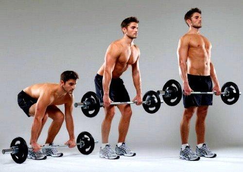 Становая тяга улучшает состояние мышц бедра, спины, а также ягодиц