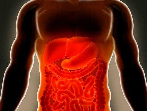 Симптомы и лечение ишемии кишечника фото
