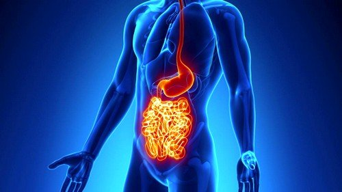 Характерные симптомы и методы лечения болезни Крона фото