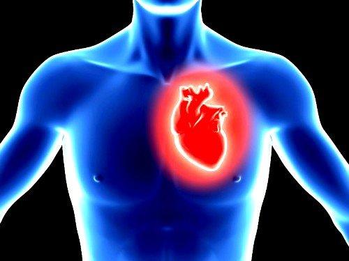 Самым опасным недугом, из-за которого болит под левой лопаткой сзади, является инфаркт миокарда
