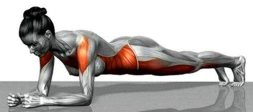 Планка - уникальное статическое упражнение, которое помогает укрепить не только мышцы кора, но и поясницу