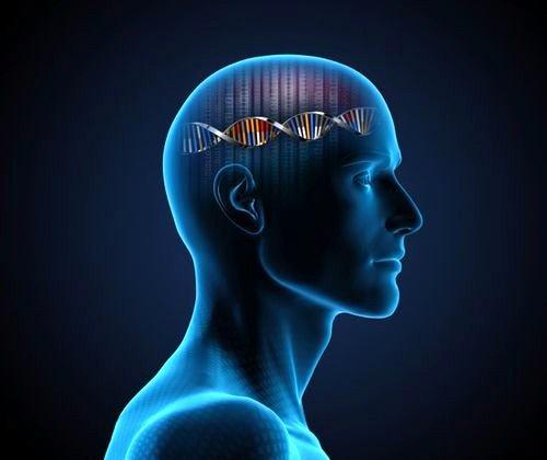 Генетическая предрасположенность может быть причиной нейродермита