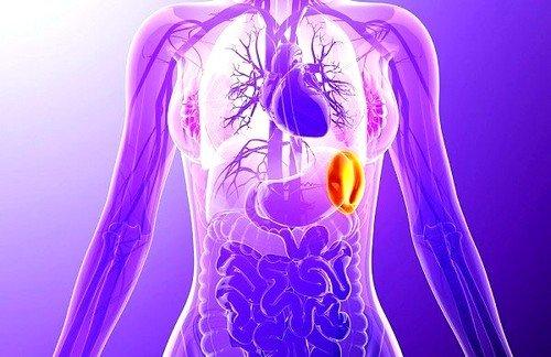 Основной причиной образования сублейкемического миелоза является образование фибромы костного мозга (милофиброз)