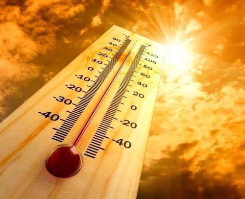 Солнечный удар: симптомы фото