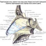 Механический тик при синдроме Туретта