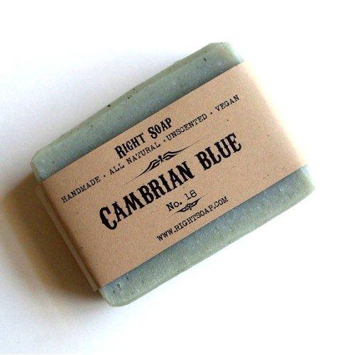 Кембрийская голубая глина: свойства и применение фото