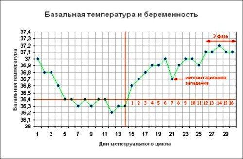 беременные графики базальной температуры
