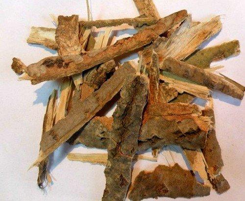 Средства приготовленные из коры осины являются прекрасными помощниками для укрепления организма и усиления функций иммунитета