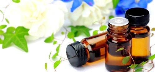Кетон, содержащийся в эфирном масле цветков, участвует в метаболизме веществ у всех живых организмов