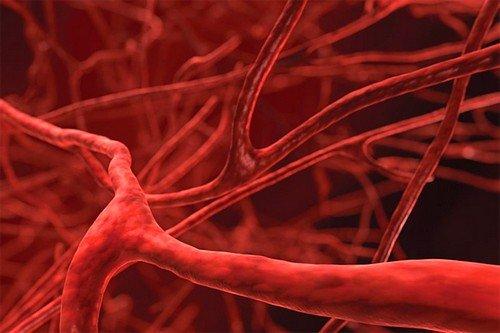 Атеросклеротическое поражение сосудов представляет собой хроническое заболевание, которое возникает вследствие нарушения жирового обмена веществ