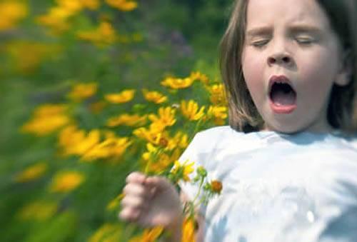 Детская аллергия на растительную пыльцу