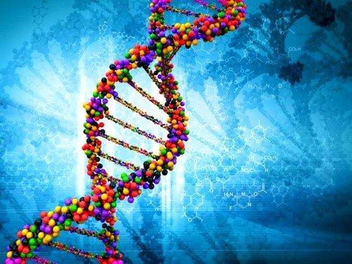 основная роль отдается факту, что болезнь имеет генетическое происхождение и может передаваться от родителя к ребенку