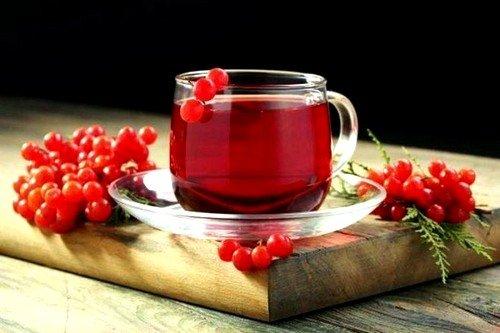 Напиток с брусничником может стать причиной развития анемии из-за замедленного усвоения железа и других микроминералов