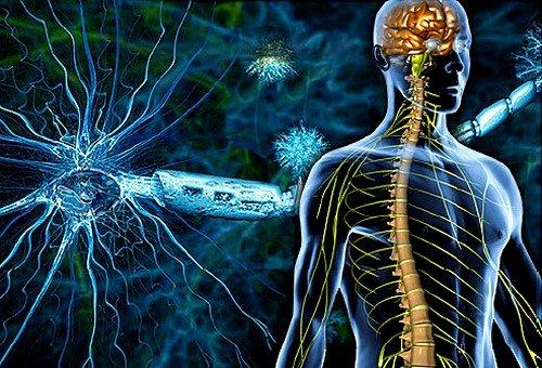 Симптомы и лечение рассеянного склероза фото