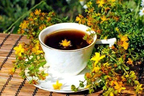Постоянное употребление чая с листьями укрепляет стенки мелких кровеносных сосудов, улучшает венозное кровообращение