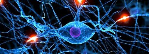 Биорезонанская терапия хорошо себя зарекомендовала в лечении патологий центральной и периферической нервных систем