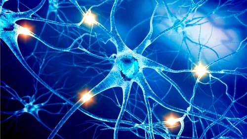 Как человеку укрепить нервную систему и психику? фото